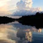 Parque Nacional do Jaú, Amazonas, Brasilien